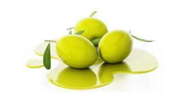 صورة الزيتون دواء وليس غذاء – Olive