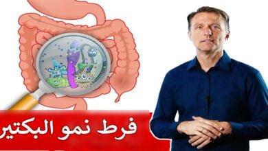 صورة بكتيريا الأمعاء الدقيقة
