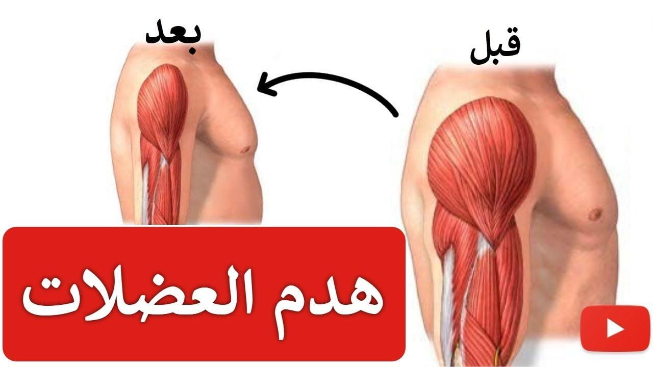 صورة بناء العضلات ومنع الترهل