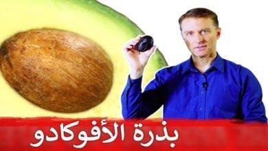 صورة ماذا يحدث لو تناولت بذرة الأفوكادو ؟