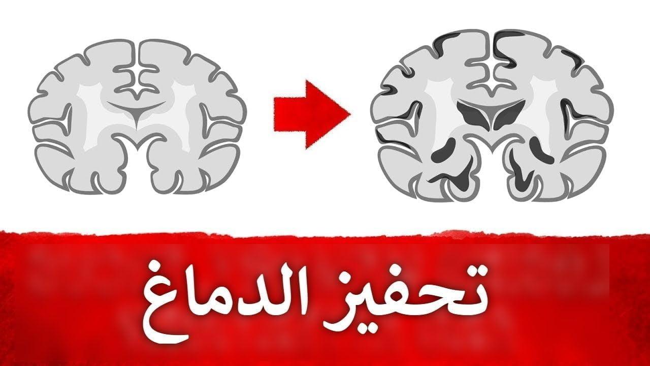 صورة تعرف على الأطعمة التي تفيد الدماغ