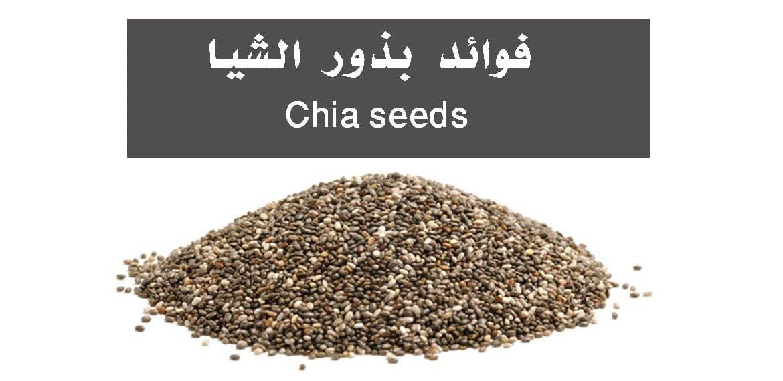 صورة فوائد بذور الشيا Chia seeds