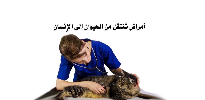 أمراض تنتقل من الحيوان إلى الإنسان