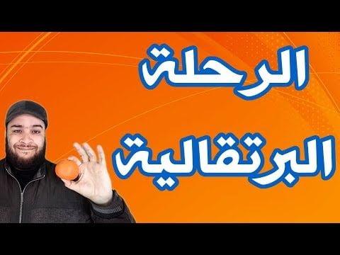 خالد الحضري- من أين جاءت تسمية فاكهة البرتقال؟