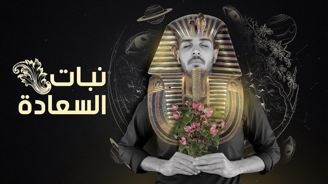 صورة المورفين نبات السعادة الفرعوني