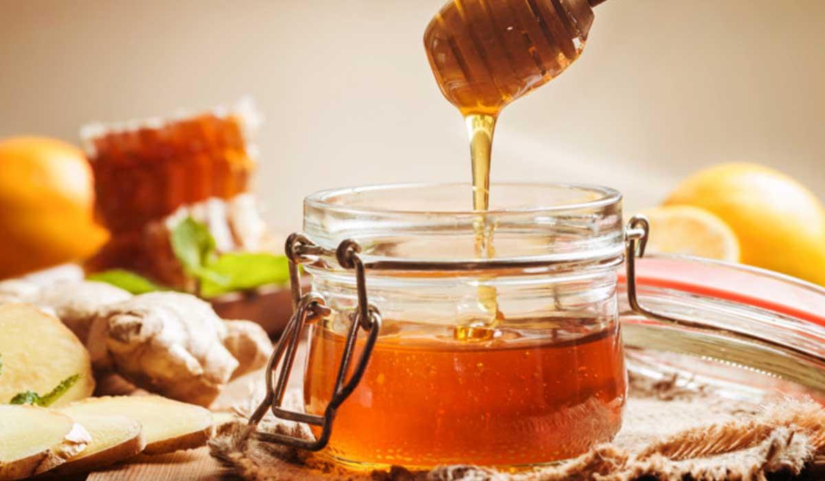 صورة عسل النحل الطبيعي فوائد طبية وطبيعية