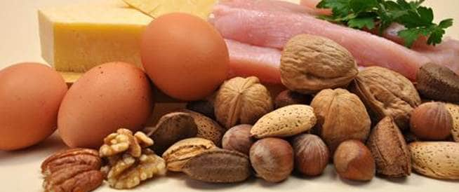 ما هو الفرق بين البروتين الحيواني والنباتي؟