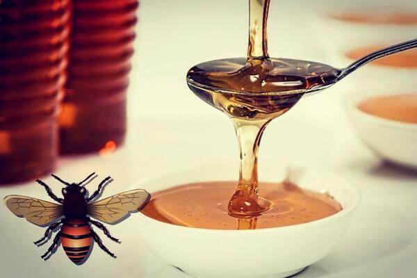 ما هي العناصر التي يحتوي عليها عسل النحل الطبيعي؟