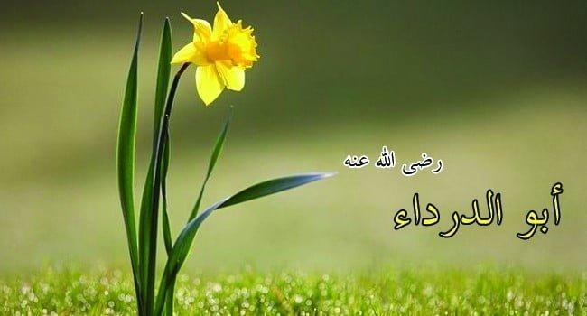 قصة إسلام أبو الدرداء