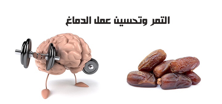 التمر وتحسين عمل الدماغ