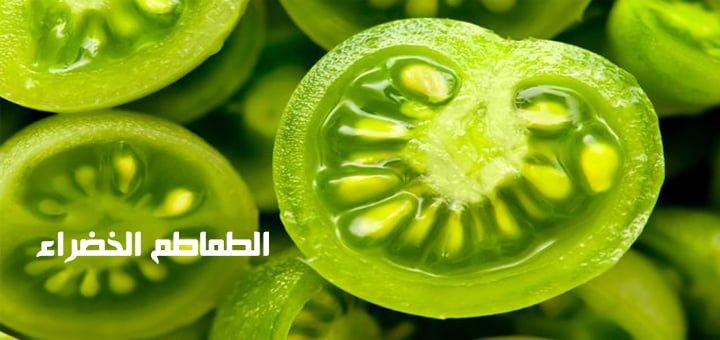 الطماطم الخضراء