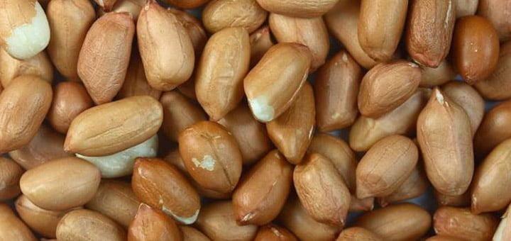 فوائد الفول السوداني للجسم