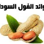 فوائد الفول السوداني peanuts benefits