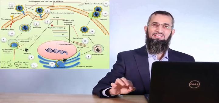 آلية عمل هيدروكسي كلوروكوين