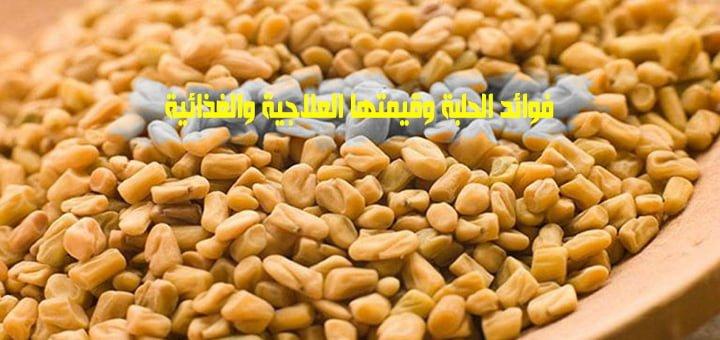 صورة فوائد الحلبة وقيمتها العلاجية والغذائية