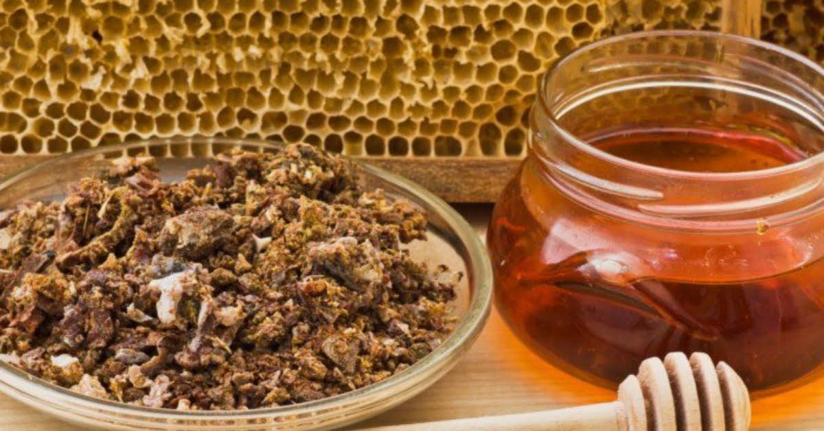 كيف يتكون عكبر النحل