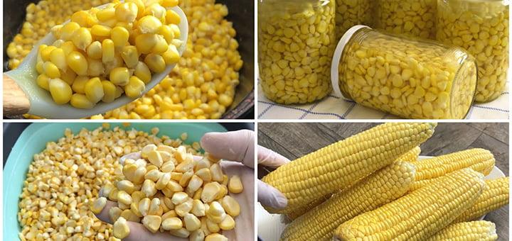 صورة أسهل طرق حفظ الذرة بدون ثلاجة