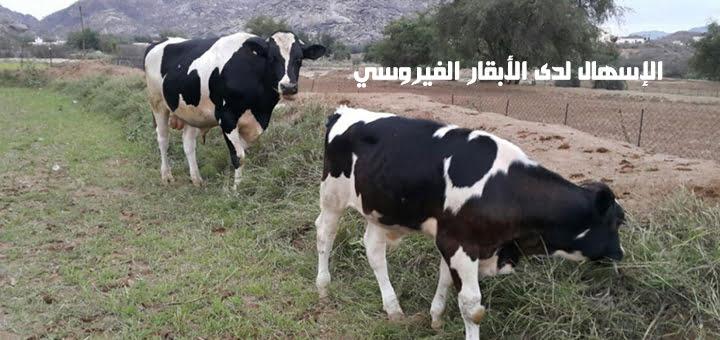 صورة الإسهال لدى الأبقار الفيروسي