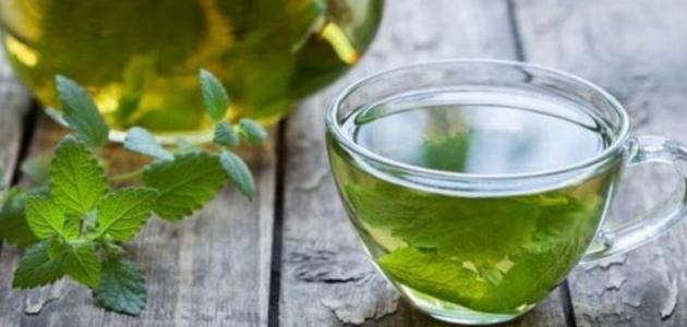 فوائد شاي النعناع الاخضر