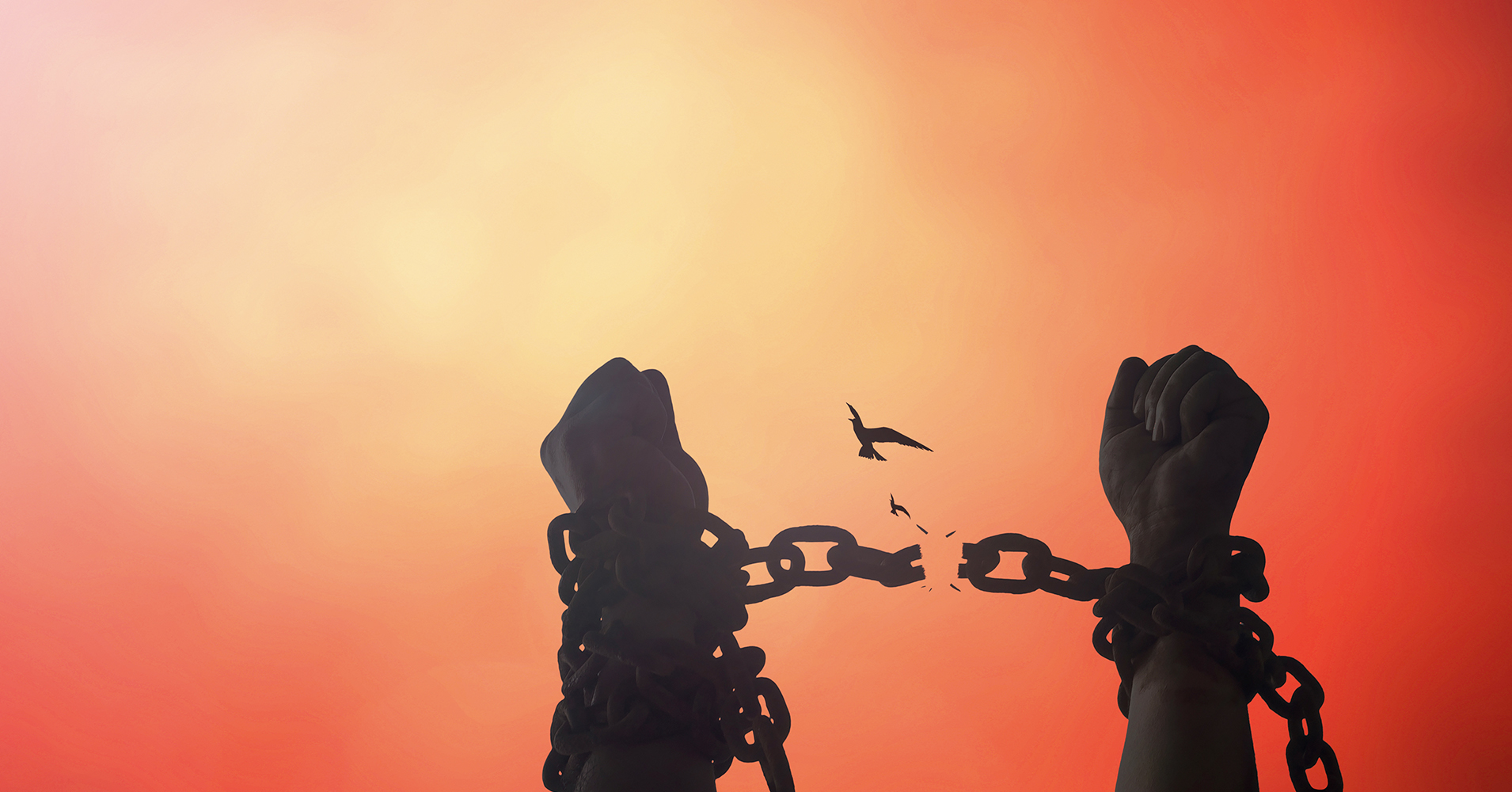 صورة مفهوم الحرية بين الغرب والإسلام