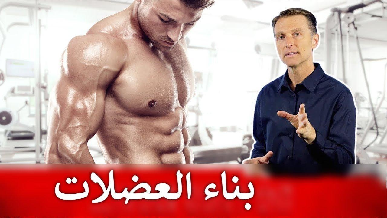 صورة كيفية بناء العضلات خلال الحمية