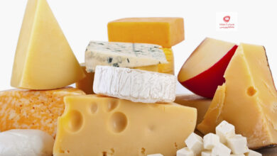 صورة صناعة الجبن بمكون صحي لا يخطر على البال بدون منفحة أو خل أو ليمون على الطريقة الشركسية