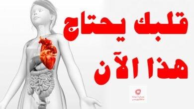 صورة الأطعمة التي تحتوي على أعلى كمية من المغنيسيوم للحماية من أمراض القلب
