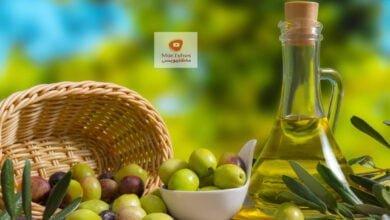 صورة كيف تعرف زيت الزيتون الأصلي من المغشوش