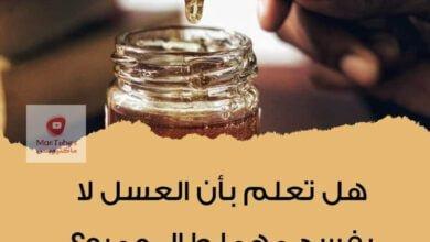 صورة لماذا العسل لا يفسد أبداً مهما طال عمره؟