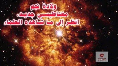 صورة نجم مغناطيسي: ولادة نجم مغناطيسي جديد، انظر إلى ما شاهده العلماء!