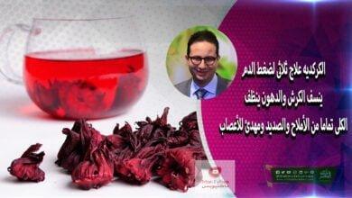 صورة فوائد الكركديه | لضغط الدم يزيل الدهون ينظف الكلى من الأملاح والصديد ومهدئ للأعصاب