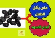 صورة فوائد البلح الاسود والبلح الاحمر والتمر ومتى يأكلها الاطفال