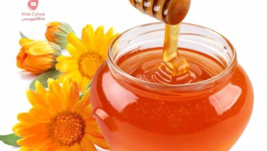 صورة فوائد و أضرار العسل الملكي او الغذاء الملكي وما هي علاجاته