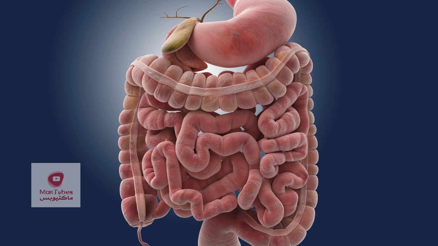 أكثر مشكلات صحية متعلقة بالأمعاء   وما علاقة الصداع النصفي والاكزيما وضباب الدماغ بذلك؟
