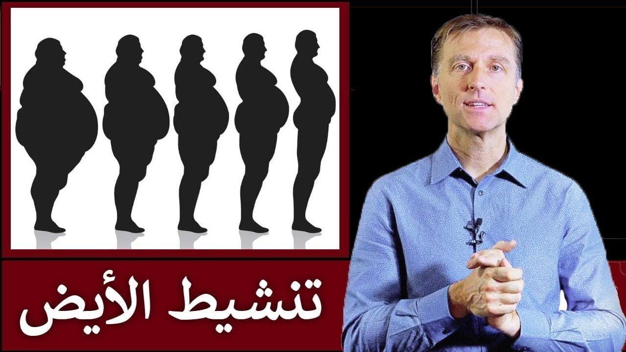 تسريع حرق الدهون | دكتور بيرج يشرح تنشيط الأيض بالتفصيل