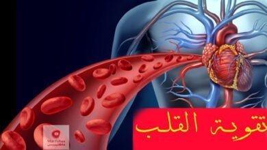 صورة تقوية القلب | القلب هو أعظم محرك في العالم | كيف يمكن تقوية القلب؟