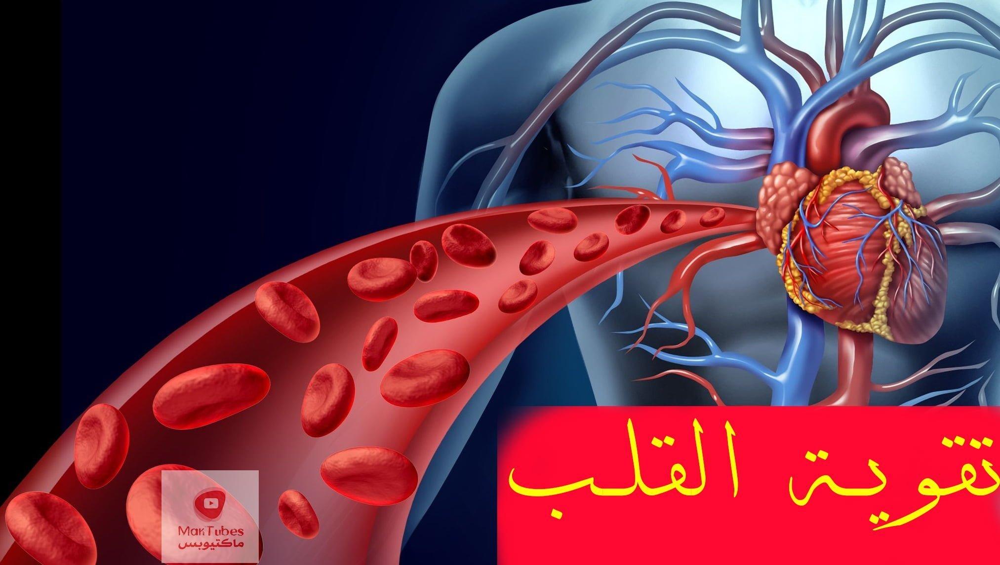 تقوية القلب | القلب هو أعظم محرك في العالم | كيف يمكن تقوية القلب؟