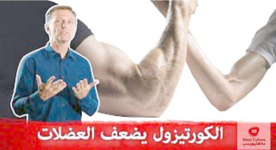 الكورتيزول والعضلات | ما هي اضراره؟ وكيف نخفضه في حال ارتفاع الكورتيزول؟