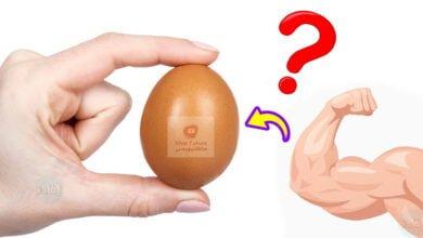 صورة البروتين في البيض | ما هي نسبته؟ | وما هي أفضل طريقة لتناوله؟