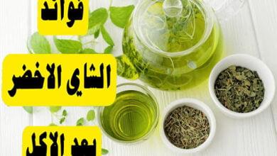 صورة فوائد الشاي الاخضر بعد الاكل | وما هي اضراره السلبية على الجسم ؟