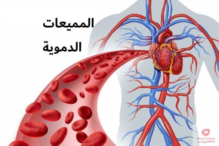 مميعات الدم   الخضار المسموحة والممنوعة عند تناول مميعات الدم