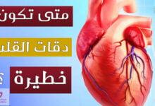 صورة بطئ ضربات القلب | ما هي اسبابها؟ وهل هي حالة خطيرة؟